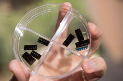 Weebit Nano RRAM chip prototypes photo
